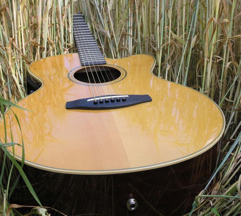 Gitarre im Schilf